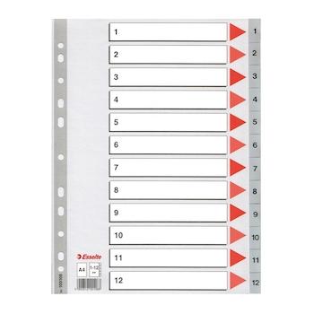 Index din plastic Esselte, A4, index 1-12
