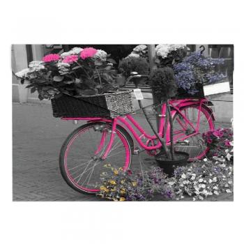 Buzunar plastic, inchidere cu capsa, A5, design Bicicleta