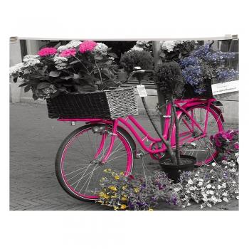 Buzunar plastic, inchidere cu fermoar, A4, design Bicicleta
